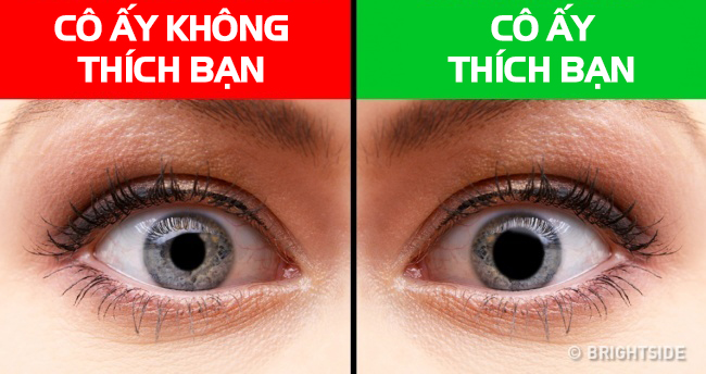 12-bieu-hien-nang-thich-ban